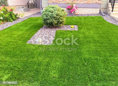 istock A beautiful artificial lawn 1017863022