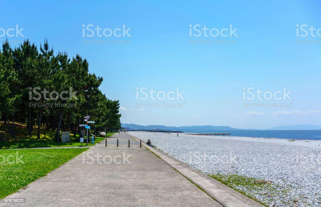 Schöne künstlichem Marmor Strand und Grün der Pinien entlang der Küste von Rinku Stadt, Osaka, Japan - Lizenzfrei Aktivitäten und Sport Stock-Foto