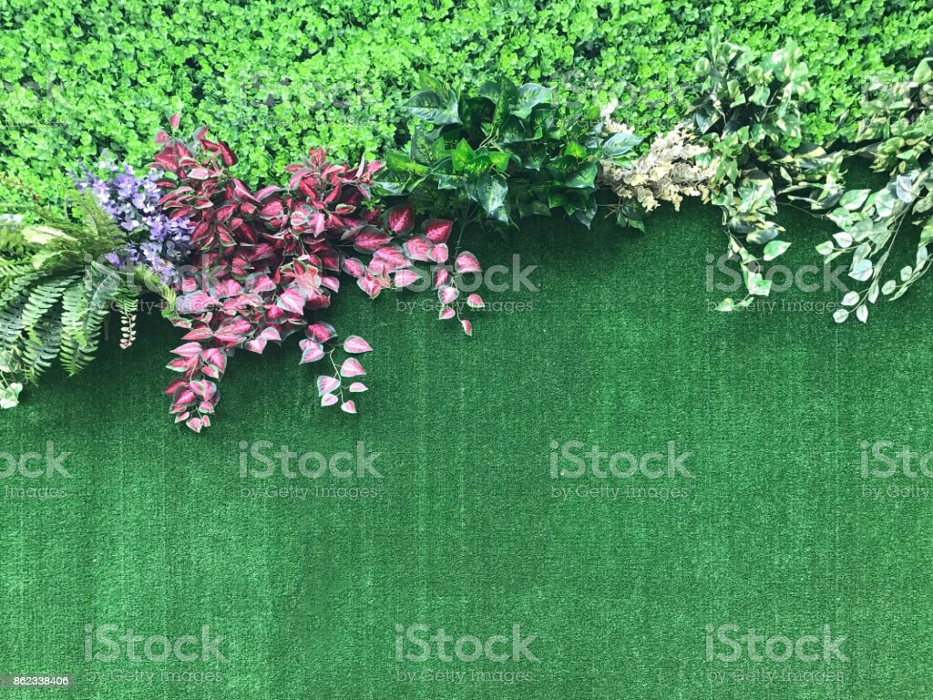 Beautiful artificial plant wall background stock photo