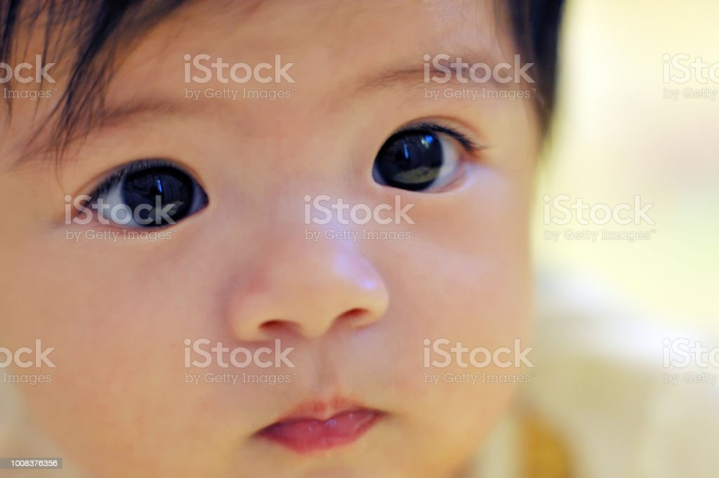 dc4967499674 A Beautiful Asian Baby Girl Stock Photo   More Pictures of 0-11 ...