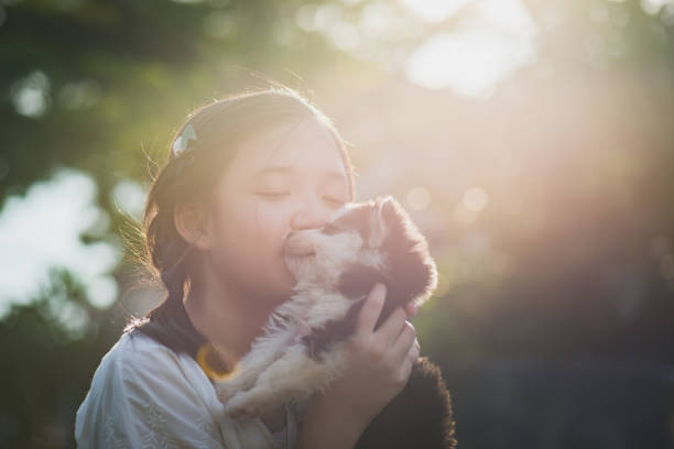 Beautiful asian girl playing with siberian husky puppy in the park picture id925565102?b=1&k=6&m=925565102&s=612x612&w=0&h=0ldvmmimzyqw3deqzxfg0gp2vowind7flq9g2cudqfg=