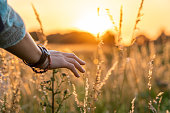 Beautiful asian woman standing on grass field with landscape of sunset in summer
