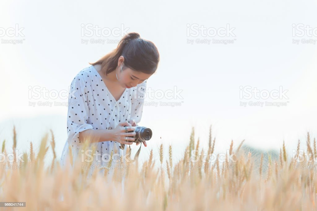 Beautiful asian woman taking photo and relaxing at barley field in summer on sunset time - Royalty-free Adult Stock Photo