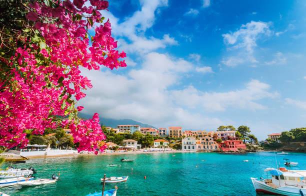beautiful assos village scenery framed with branch of magenta blossom fuchsia flower. summer vacation concept - grecja zdjęcia i obrazy z banku zdjęć