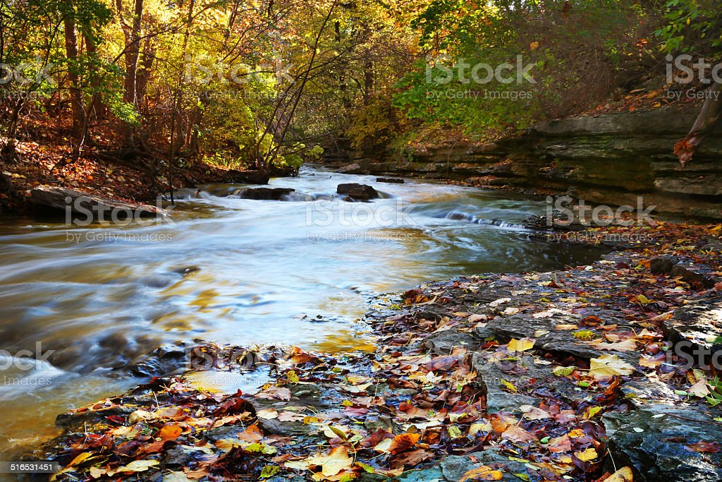 Beautiful Autumn Creek In Illinois stock photo