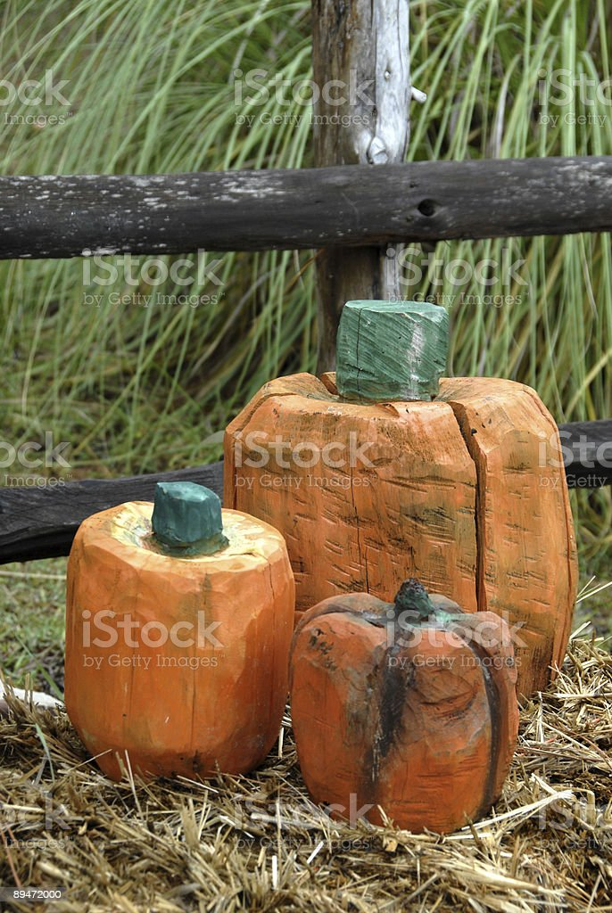 Beautiful Autumn Display royalty free stockfoto