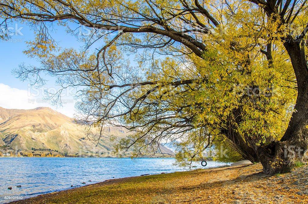 Beautiful autumn landscape Lake Wanaka in New Zealand. stock photo