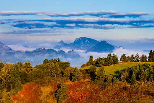 Beautiful Autumn landscape with cloud inversion