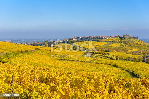 925850210istockphoto Beautiful autumn landscape with vineyards near the historic village of Riquewihr, Alsace, France - Europe. Colorful travel and wine-making background. 855648100