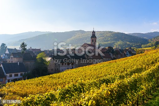 925850210 istock photo Beautiful autumn landscape with vineyards near the historic village of Riquewihr, Alsace, France - Europe. Colorful travel and wine-making background. 917378010