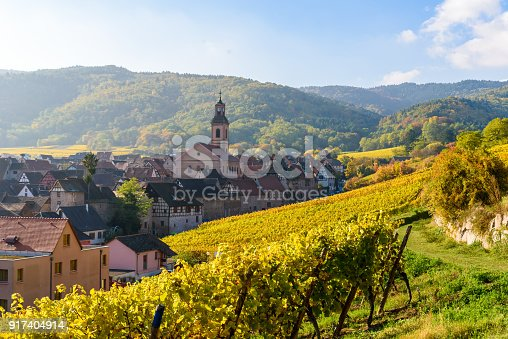 925850210istockphoto Beautiful autumn landscape with vineyards near the historic village of Riquewihr, Alsace, France - Europe. Colorful travel and wine-making background. 917404914