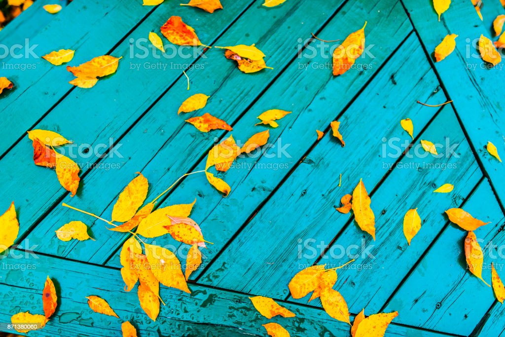 Beautiful autumn leafs on green wooden desk royalty-free stock photo