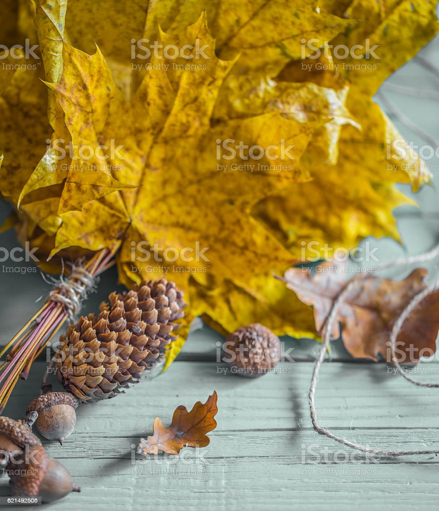 beautiful autumn leaves on wooden background photo libre de droits