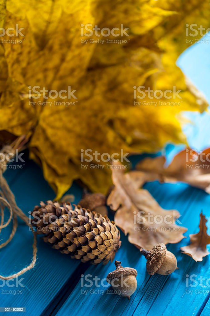 beautiful autumn leaves on wooden background foto stock royalty-free