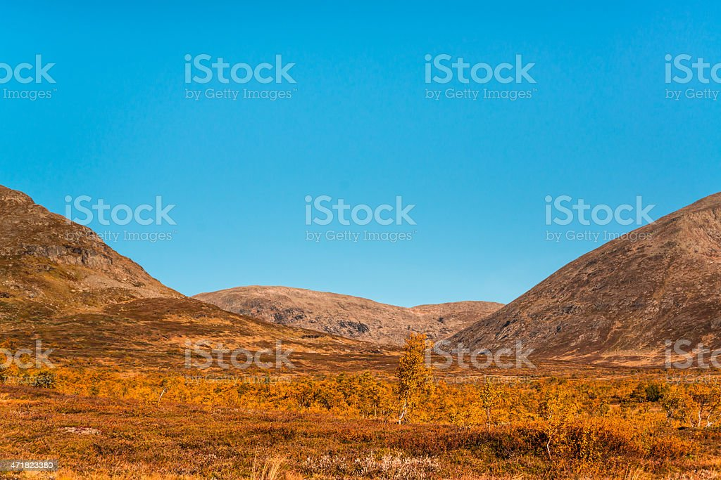 beautiful autumn picture from the mountains stock photo