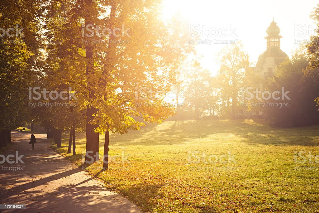 Beautiful autumn royalty-free stock photo