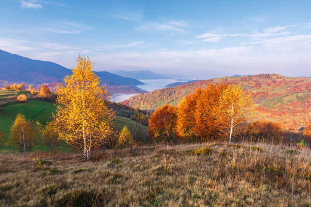 beautiful autumn rural landscape at sunrise stock photo