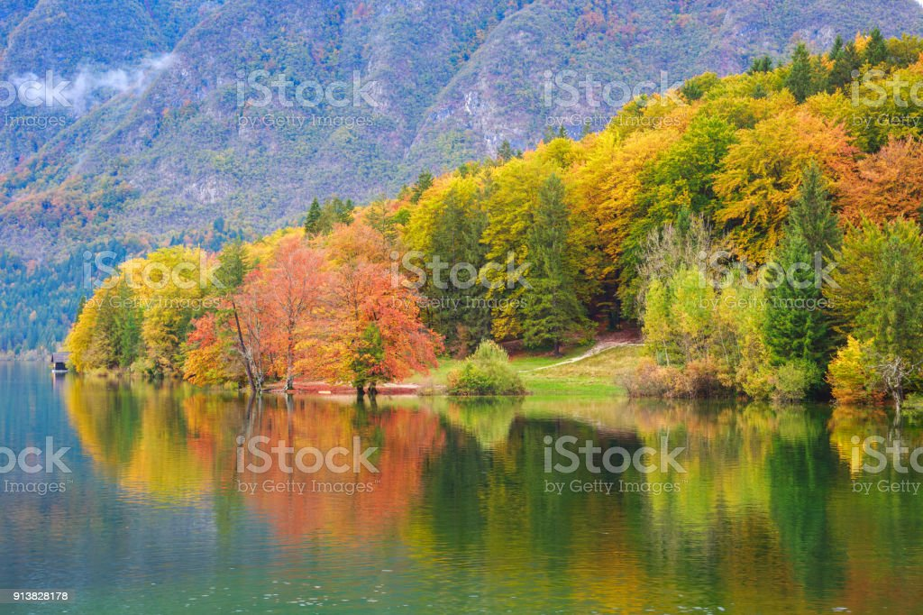 Beautiful autumn scenery at lake Bohinj. stock photo