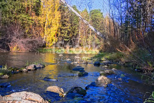 istock Beautiful autumn trees reflecting on the smooth water surface. Warm autumn day on the river. River bank landscape. 1125038534