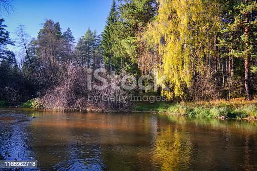 istock Beautiful autumn trees reflecting on the smooth water surface. Warm autumn day on the river. River bank landscape. 1168962718