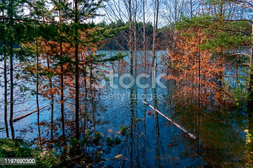 istock Beautiful autumn trees reflecting on the smooth water surface. Warm autumn day on the river. River bank landscape. 1197692300