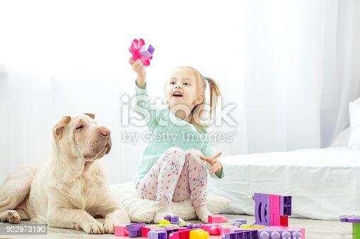 istock Beautiful baby girls playing with plastic toy blocks. The dog li 922973190