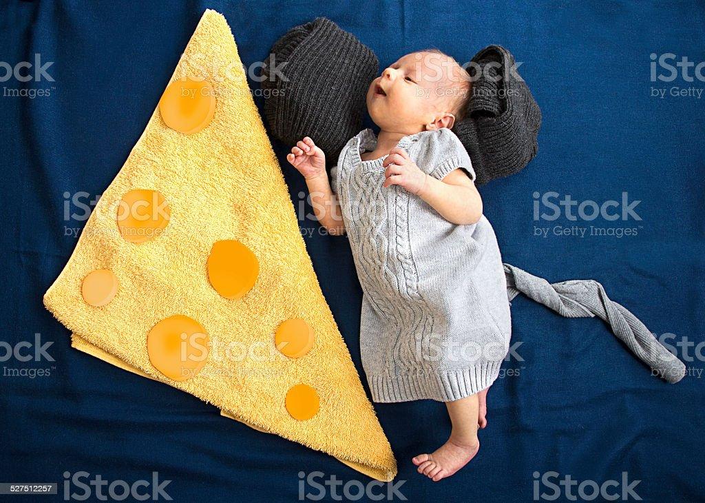 Beautiful baby newborn mouse love tasty cheese stock photo