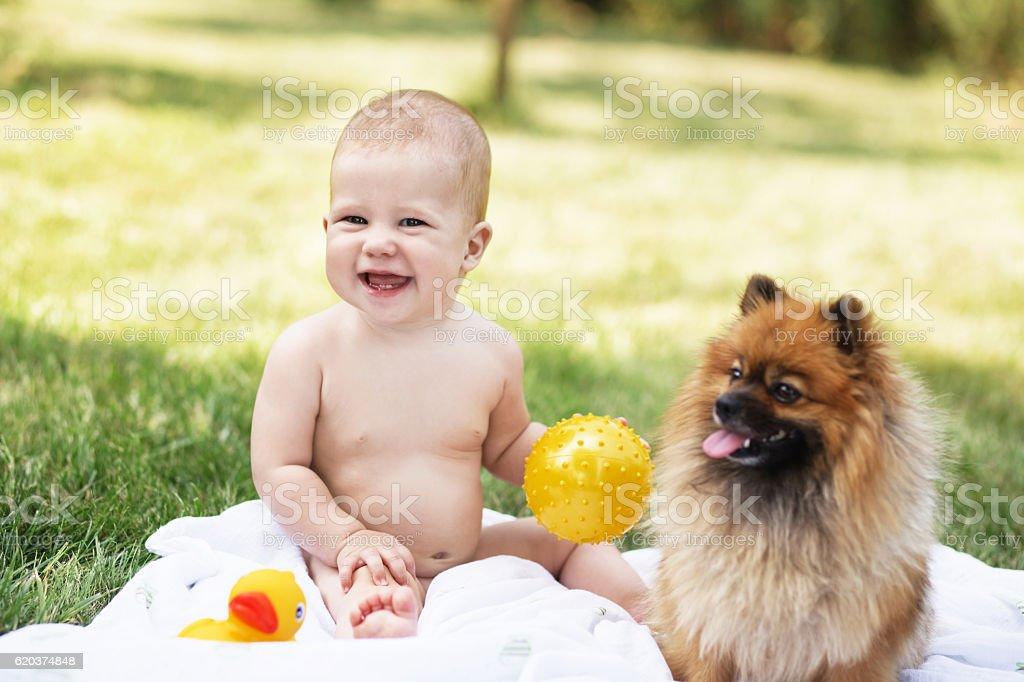 beautiful baby with Pomeranian spitz foto de stock royalty-free