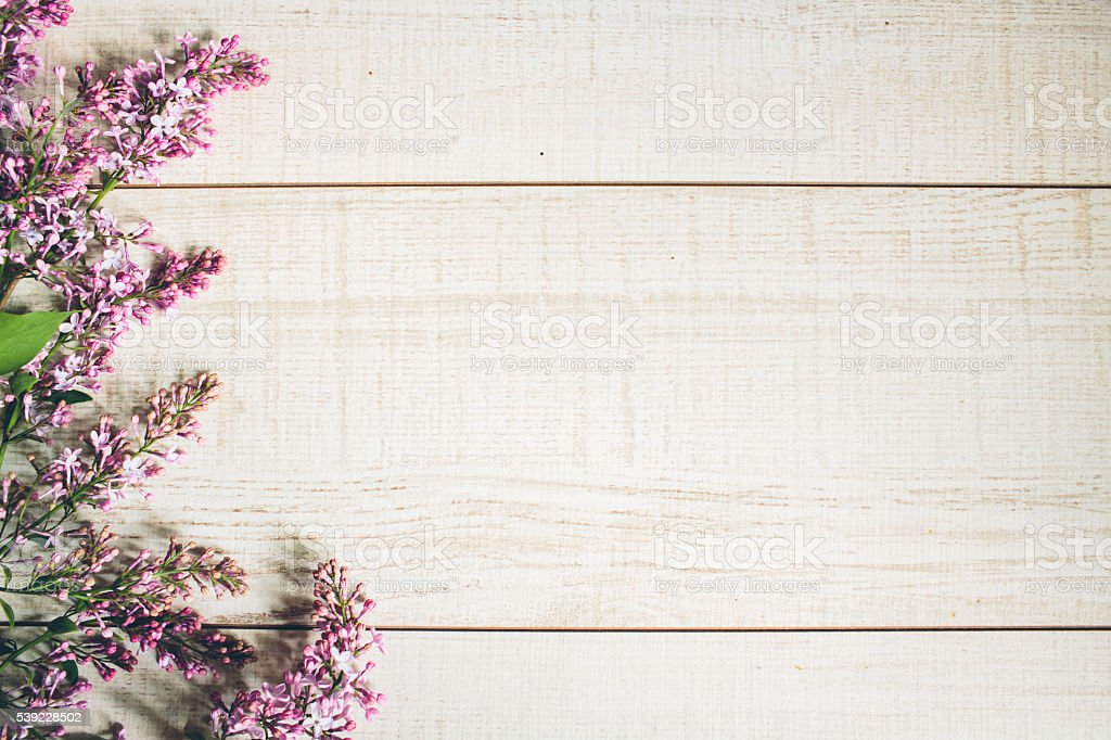 Beautiful background of lilac flowers. stock photo