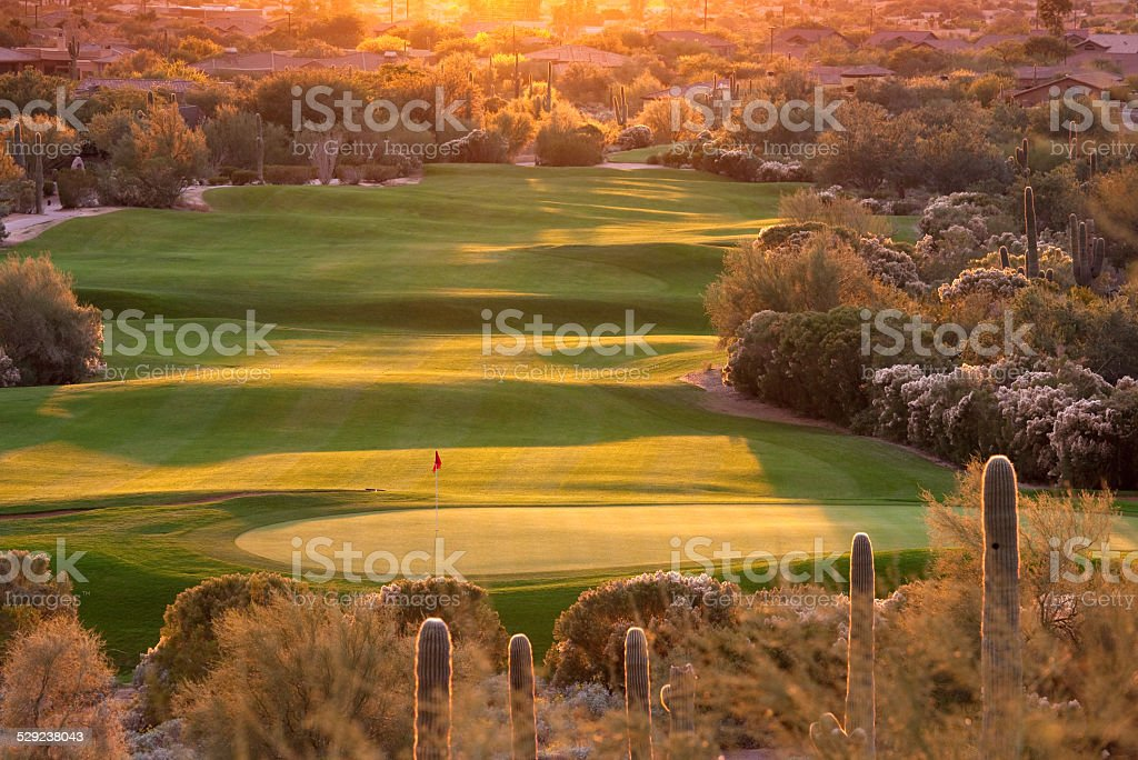 Beautiful Backlit Desert Golf Course in Phoenix Arizona stock photo