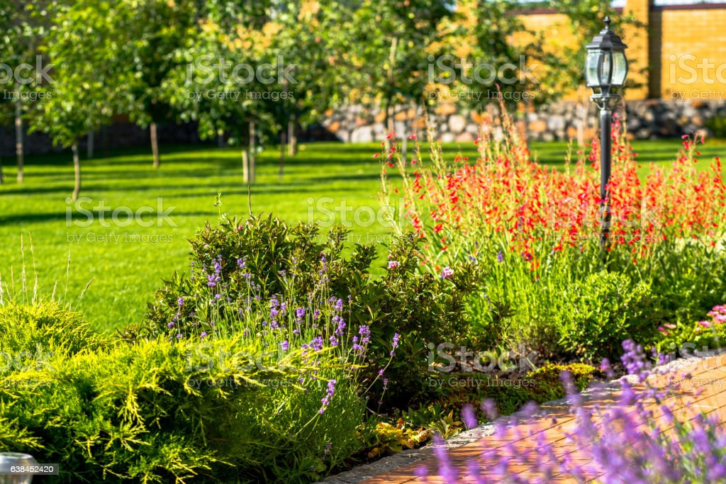 Beautiful backyard landscape design. View of colorful trees and decorative – Foto