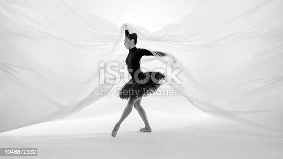 beautiful ballerina dancing classical behind the nylon