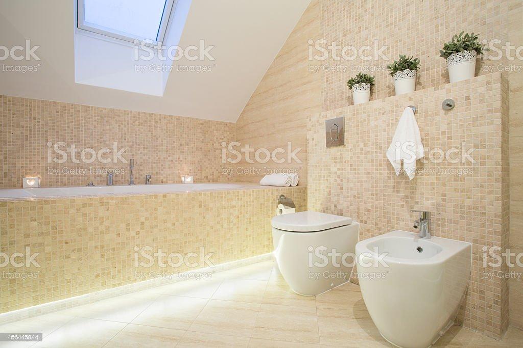 Schöne Badezimmer In Beige Farbe Stockfoto und mehr Bilder von 2015