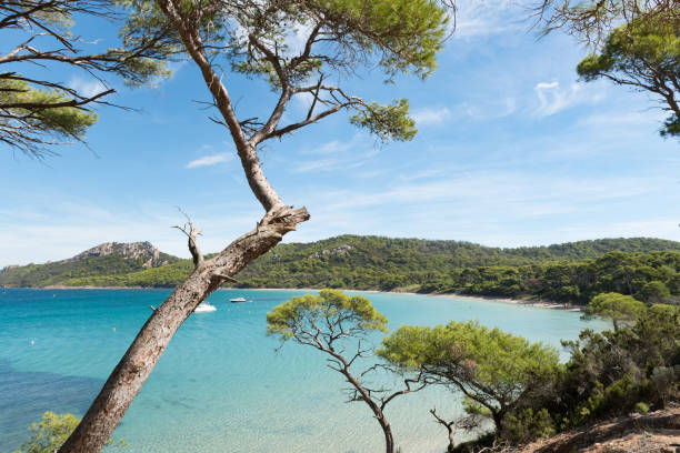 Beautiful bay in Porquerolles island, in the south of France. Beautiful bay in Porquerolles island, archipelago of the Îles d'Hyères, in the south of France. var stock pictures, royalty-free photos & images