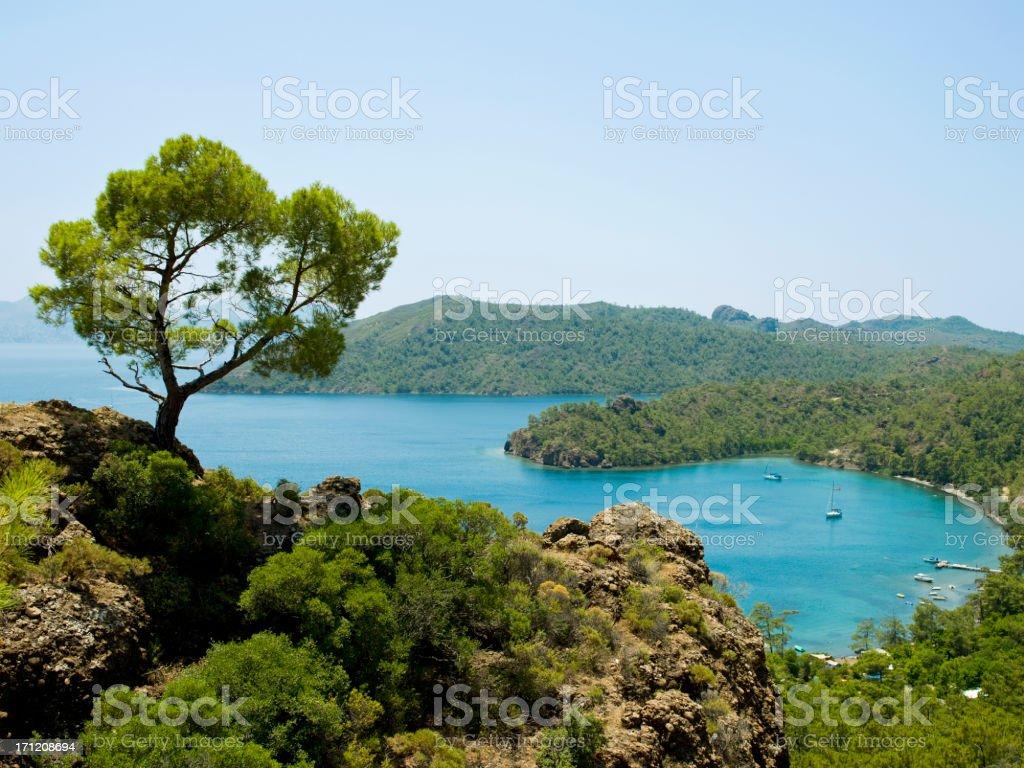 Beautiful bay stock photo