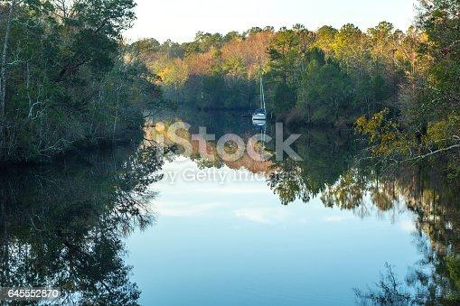 Idyllic scene on a bayou near Apalachicola, Florida.
