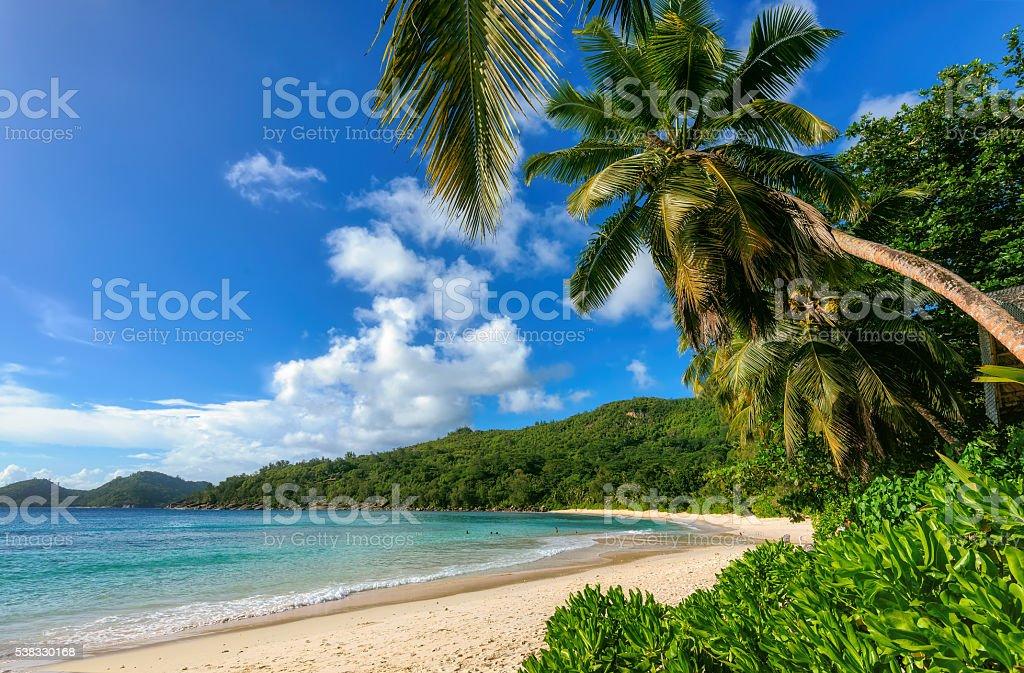 Beautiful beach Anse Intendance at Seychelles, Mahe. stock photo
