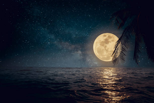 beautiful beach at night - romantic moon stock photos and pictures