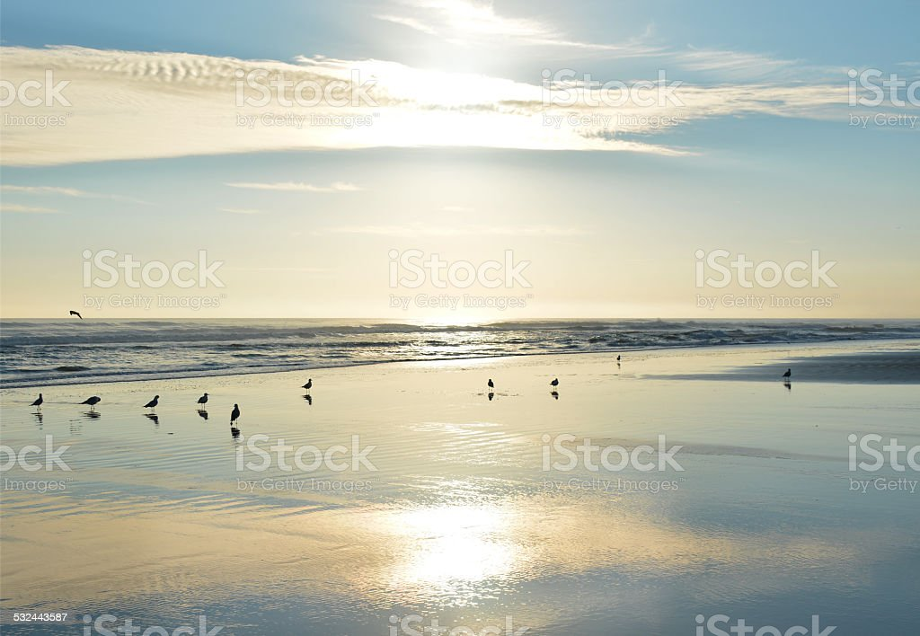 Beautiful beach at sunrise. stock photo