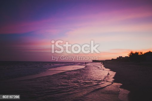 Amazing evening sunset purplish colours over beach. Calm weather, small waves, palms in the back.