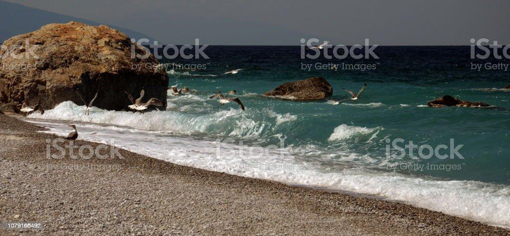 Beautiful beach in Cyprus island stock photo