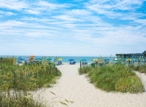 Beautiful beach in South Carolina. stock photo