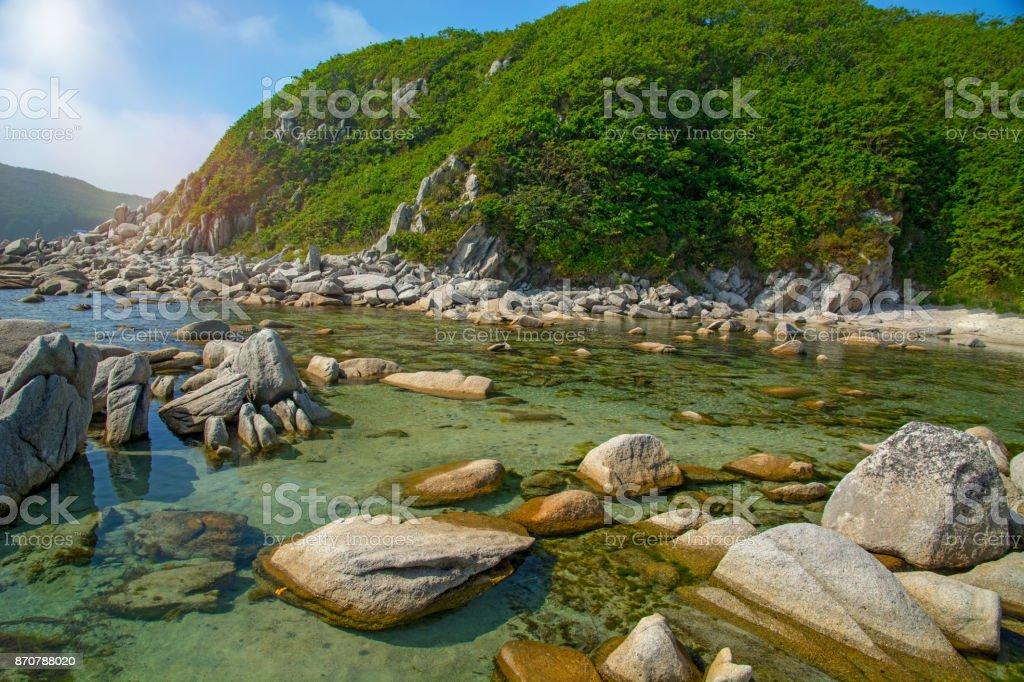 lotes de playa de piedras alto de las rocas destruidas, árboles crecen. - foto de stock