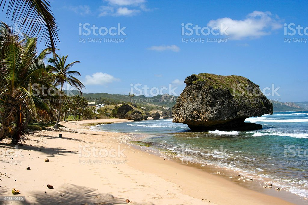 Beautiful beach on Barbados in the Caribbean stock photo