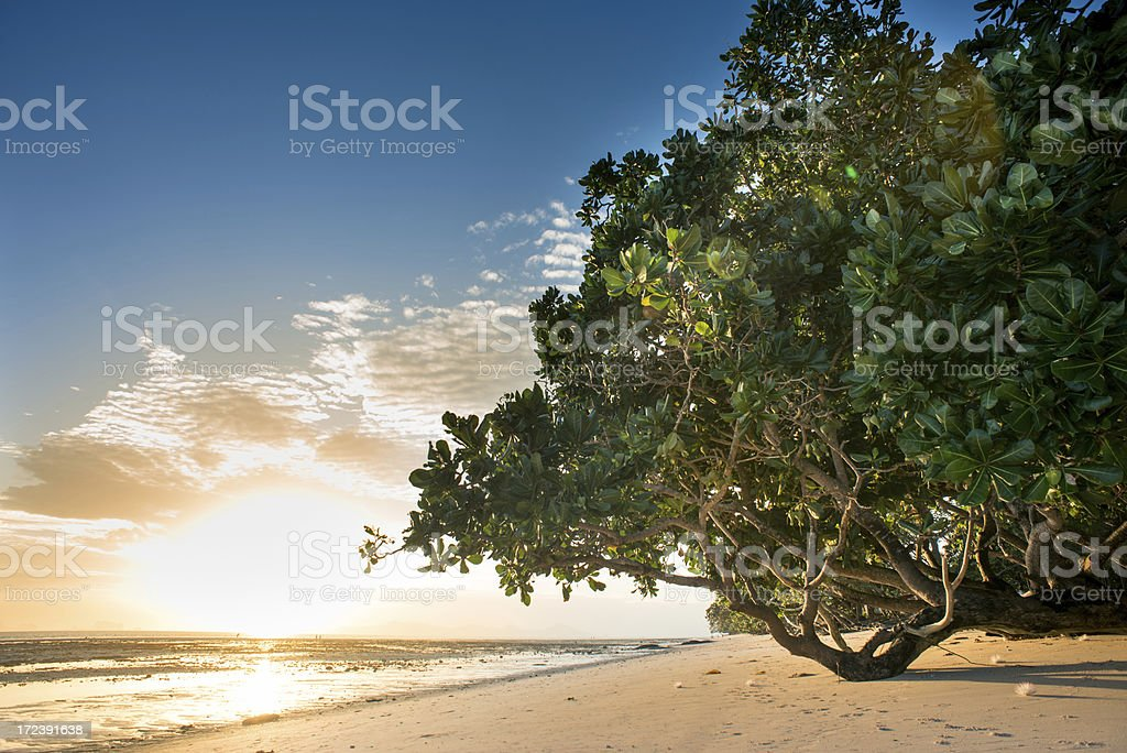 Beautiful Beach royalty-free stock photo