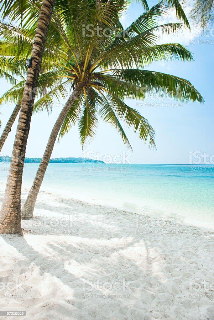 Wunderschöne Strand – Foto