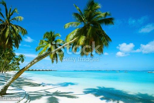 istock Beautiful Beach Resort 171579629