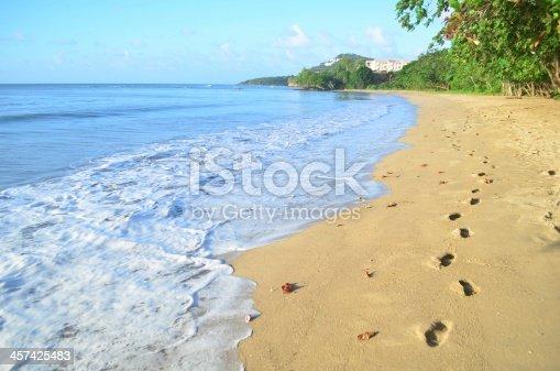 beautiful beach shore and footprints scenic