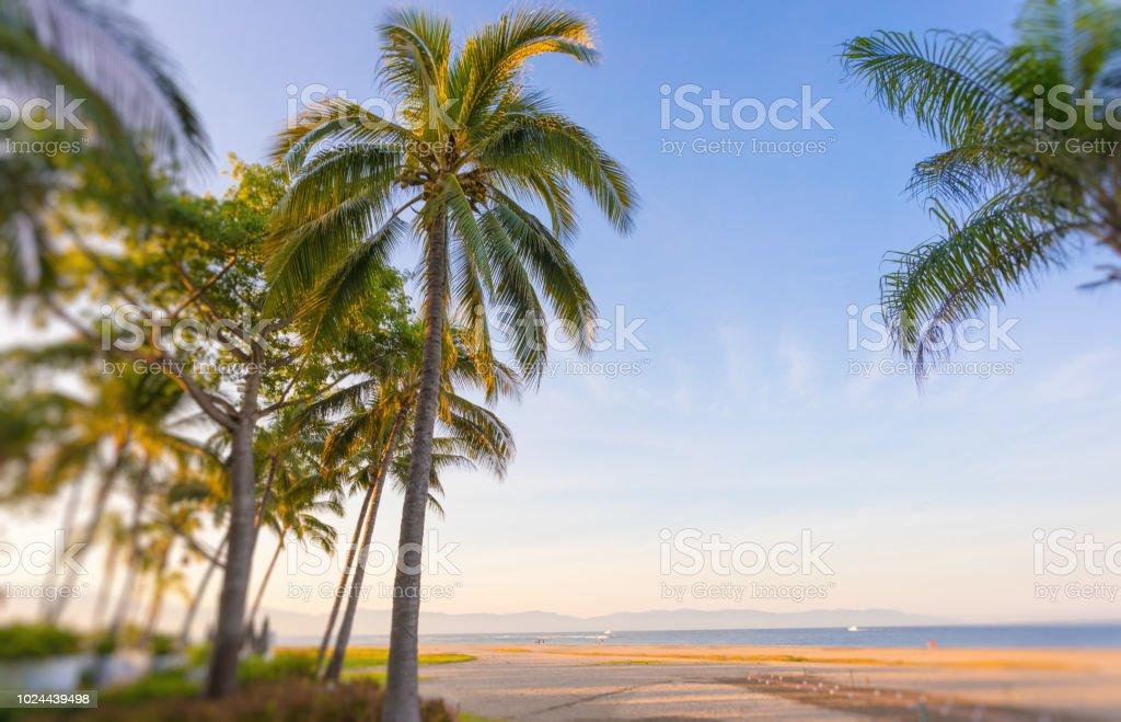 beautiful beach view stock photo