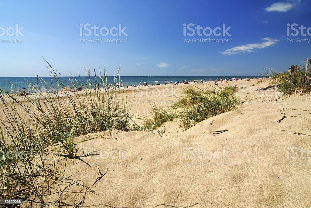 Bella spiaggia con una Duna foto stock royalty-free